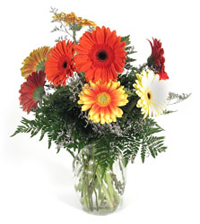 Gerbera Daisy Vase from Yesterday's and Tomorrows in Warner Robins, GA