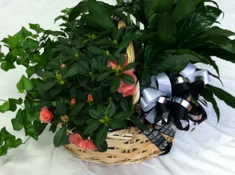 Triple Plant Garden Basket from Yesterday's and Tomorrows in Warner Robins, GA